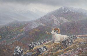 Denali's Pride original acrylic painting by Canadian Wildlife Artist Clinton Jammer