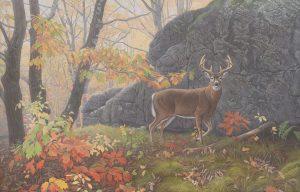 Sharp-Dressed Man original acrylic painting by Canadian Wildlife Artist Clinton Jammer