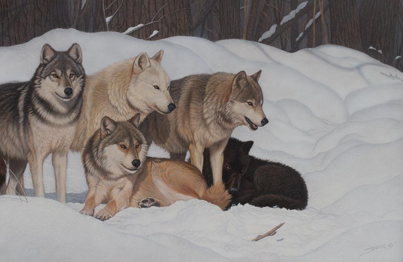 The Brotherhood original wildlife painting by Wildlife Artist Clinton Jammer